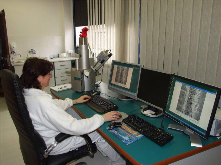 Riadkovací elektrónový mikroskop TESCAN LMU II EDX-analyzátor BRUKER